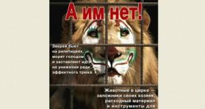 Жестокость в цирках